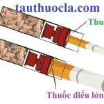 t_u_h_t_thu_c_l__di_u_esse_nh__grande